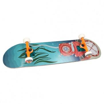Скейтборд в сборе Nord Vodolaz Blue 32 x 8.125 (20.6 см), 1160436,  Nord, цвет голубой