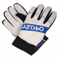 Перчатки сноубордические Oakley Factory Winter Glove Arctic White