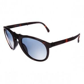 Очки женские Sunpocket Shiny Tortoise, 1108551,  Sunpocket, цвет бордовый, черный