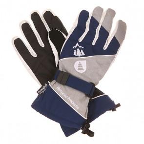 Перчатки Picture Organic Aramis Glove Dark Blue/Grey, 1151706,  Picture Organic, цвет серый, синий, черный