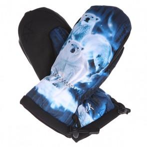 Варежки сноубордические женские женский Celtek Gallery Mitten Nice Bear, 1133547,  Celtek, цвет белый, синий, черный