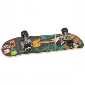 Скейтборд в сборе детский детский Fun4U Safari Multi 24 x 6 (15.2 см), 1146838,  Fun4U, цвет мультиколор