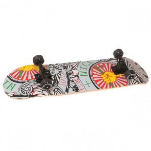 Скейтборд в сборе Fun4U Benice Multi 31 x 8 (20.3 см), 1146847,  Fun4U, цвет мультиколор