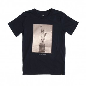 Футболка детская DC Libertad Ss By Tees Blue Iris, 1152494,  DC Shoes, цвет синий