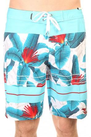Шорты пляжные Quiksilver Riot White, 1145669,  Quiksilver, цвет голубой