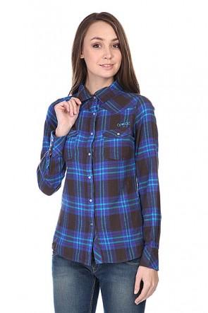 Рубашка в клетку женская Animal Shirt Black/Blue, 1112631,  Animal, цвет синий, черный