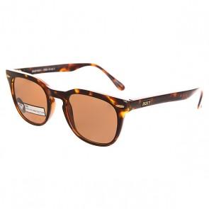Очки женские Roxy Emi Matt/Tor Brown, 1139726,  Roxy, цвет коричневый