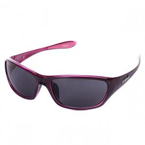 Очки женские Animal Flo Black/Pink, 1057276,  Animal, цвет фиолетовый