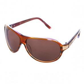 Очки женские Animal Eva Orange, 1057285,  Animal, цвет фиолетовый