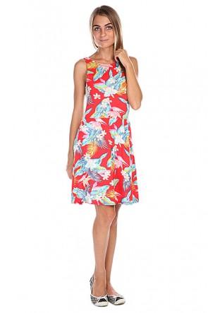 Платье женское Billabong Tikal Warm Red, 1118387,  Billabong, цвет голубой, красный
