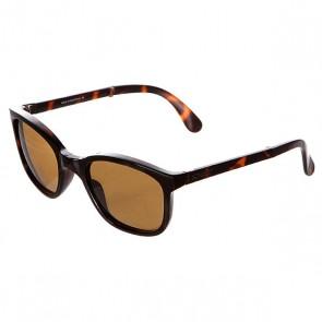 Очки Sunpocket Tonga Shiny Tortoise, 1125824,  Sunpocket, цвет коричневый